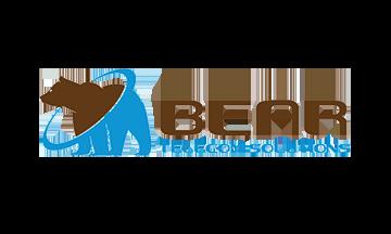 Santino Cattaneo, Bear Telecom Solutions