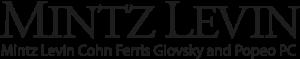 Data Center Industry Attorney Perspectives Mintz Levin Logo